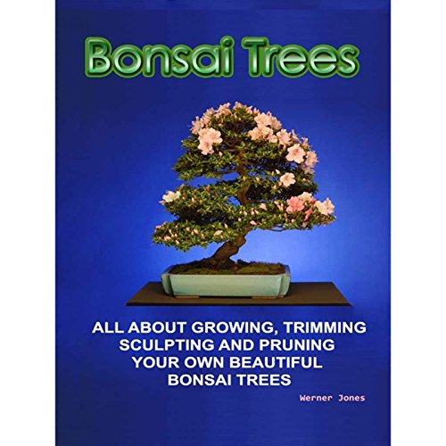 Bonsai Trees (Correct Times) (English Edition)