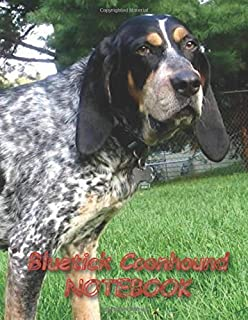 Bluetick Coonhound NOTEBOOK: notebooks and journals 110 pages (8.5