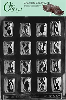 Cybrtrayd Life of the Party AO034 Heath Type Bars All Occasions Chocolate Candy Mold in Sealed Protective Poly Bag Imprinted with Copyrighted Cybrtrayd Molding Instructions