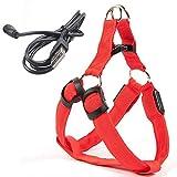 USB LEDDog Wire Harness Pet Cat Dog Collar Wire Harness Vest Seat Belt Light Dog Wire Harness Pet Dog Luminous Fluorescent CollarXLRed