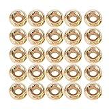 DAUERHAFT Material de aleación de tungsteno, señuelo para Peces, 6 Bolas de Cabeza de NINFA de Diferentes tamaños, para Pescar(4.6mm)