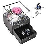 Rosa Eterna Natural, PTN Paquete de Regalo de Joyas de Flores Preservadas Conservadas a Mano, con Broche, Regalos Románticos para Ella en el Aniversario del Día de la Madre del día de San Valentín