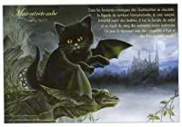 ねこの引出し フランス製猫のポストカード  ★Matoutretombe