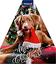 Kalender hund Advent amazon