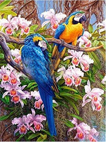 5D DIY Diamond Painting Full Drill Cross Stitch Kit Bird Crystal Rhinestone Embroidery Pictures Arts Craft for Home Wall Decor Child Gift Y5324M 30x50cm(11.8x19.6inch)