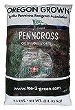 Penncross Bentgrass Putting Green Seed - 1 Lb.
