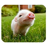iFUOFF Animal Design Cute Baby Pig Mousepad Rubber Mouse Pad 220mm x 180mm