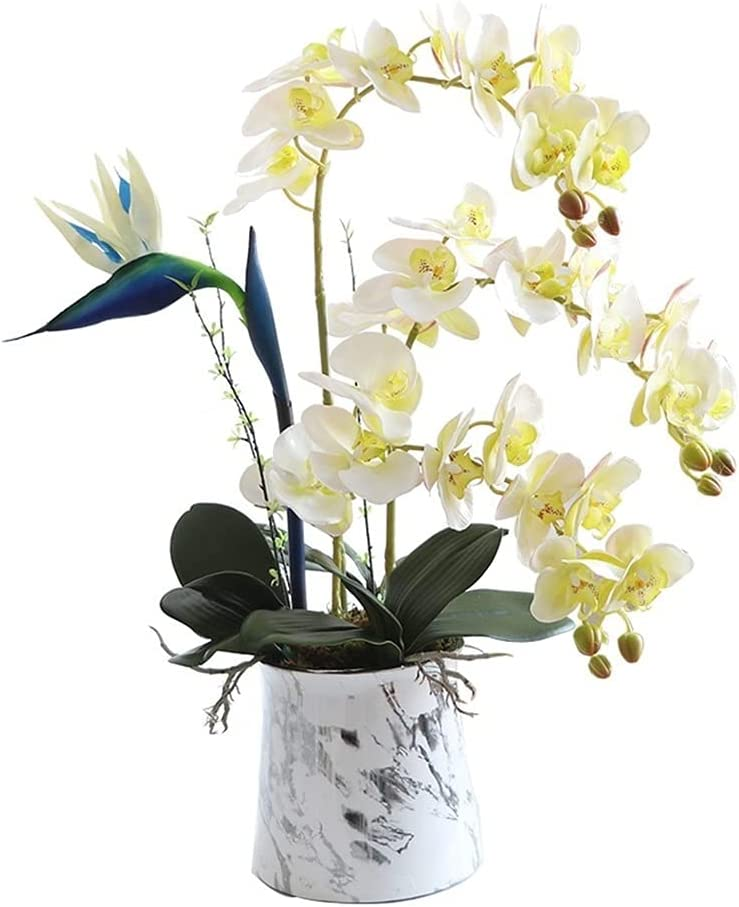 Realistic Artificial Don't miss the campaign Flower with F Vase Orchid Free Shipping New
