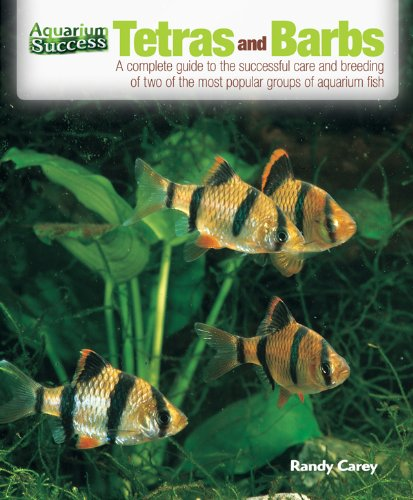 Tetras and Barbs (Aquarium Success) (English Edition)