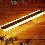 Spiegelleuchte LED 16W,LED Spiegellampe Bad 3000K/50cm - für Möbel, Spiegel und Bad [Energieklasse A+]