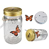 Fangfang LED Lamp Romantic Glass Animated Butterfly Jar Gift Decoration (Orange)