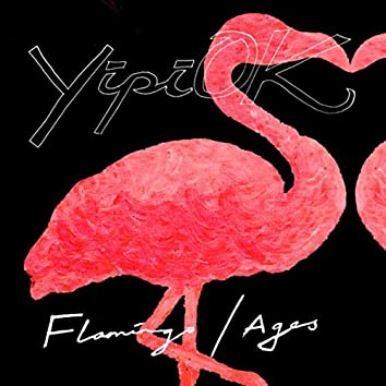 Flamingo / Ages