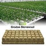 Rockwool / Stonewool Grow Cubes Hojas De Inicio Para Esquejes Clonación, Propagación De Plantas Medio De Cultivo Hidropónico De Inicio De Semillas Medio De Cultivo Para Crecimiento Vigoroso De Plantas