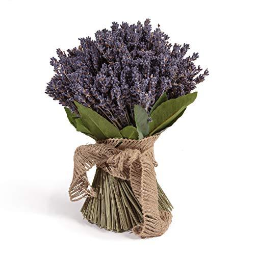 ROSEMARIE SCHULZ Heidelberg Getrockneter Lavendel aus der Provence Lavendelstrauß Lavendelbund mit ca. 600 Stiele Trockenblumen Raumduft Deko Ernte August 2020
