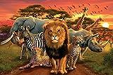 Pyramid America African Kingdom Lion Tiger Leopard Elephant Zebra Animals Cool Wall Decor Art Print Poster 36x24