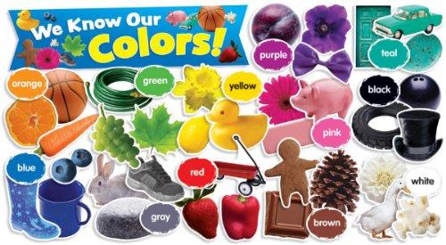 Scholastic Teacher's Friend Colors in Photos Mini Bulletin Board, Multiple Colors (TF8090)