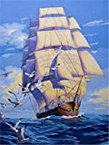 DUKEMG DIY ölgemälde malen nach Zahlen Kits Maritime Navigation leinwand wandkunst Wohnzimmer Hause Kaffee Hotel bar schmücken Geschenk 40x50 cm mit gerahmten Pinsel