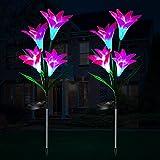 Solarlampen für Außen Garten, 2 Stück Solarleuchten für Außen Solarleuchten Garten Dekoration mit Farbwechsel LED Lampen Weihnachtsdeko, Frühlingsdeko Solar Gartenleuchte Deko Blumen
