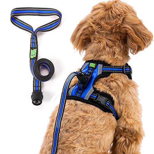 Easy Lock Hundegeschirr und Leine Set für kleine große Hunde Welpenrassen, Magnetverschluss, reflektierende Weste mit Trainingsleine, einfach mit einer Hand zu verbinden