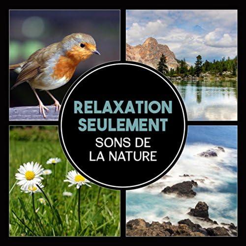 Oasis Des Bruits Naturels