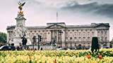 See beautiful Buckingham Palace. View the Victoria Memorial, horse-guards parade, and Admiralty Arch. Discover how to tell when the Queen is home.