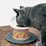 Zoom IMG-1 meihao ciotole per gatti sollevate
