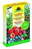 Neudorff Azet Fertilizante Fresas y arándanos, Amarillo, 14.7x4.5x23.2 cm
