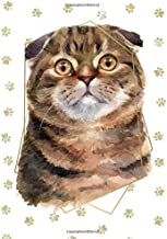 Scottish Fold Shorthair Cat Portrait Notebook -- Creative Journal: LINED, College Ruled,7x10, Cream Paper,184 Pages