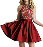 Homecoming Dress High Neck Short Cocktail Dresses Sleeveless Prom Dress Gown Lace Homecoming Dresses Red Pear