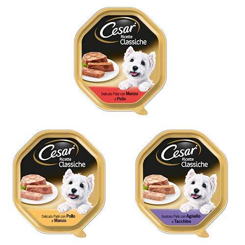 Cesar Ricette Classiche Cibo per Cane, 3 gusti diversi, 84 Vaschette da 150 g