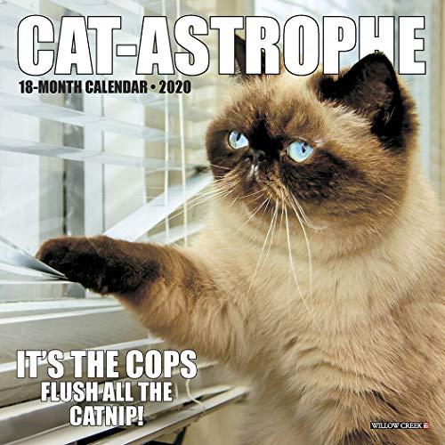 Cat-astrophe 2020 Mini Calendar
