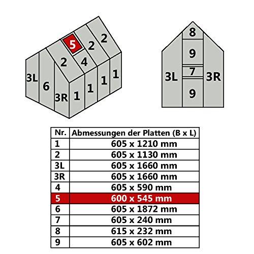 Jawoll Hohlkammerplatte für Gewächshaus Gartenhaus Treibhaus Nr. 5/600 x 545 mm | 36,33 €/m²