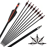 ZSHJG 12pcs 30 Pollici Frecce in Fibra di Vetro Spine 500 Frecce di Caccia con Freccia Punto Frecce di Pratica Bersaglio per Ricurvo e Arco Compound (Rosso)
