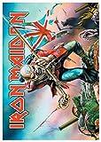Póster Bandera de Iron Maiden | 663