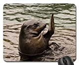 Mouse Pad - Seal Waving Hello Hi Hallo Welcome Eared Marine