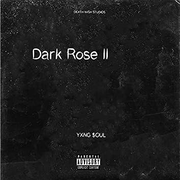 Dark Rose II