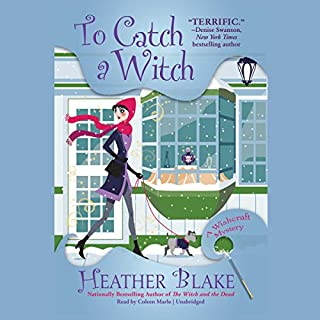 To Catch a Witch cover art