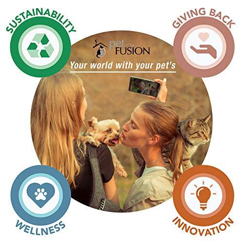 PetFusion Lounge: Kratzmöbel für Katzen. - 6