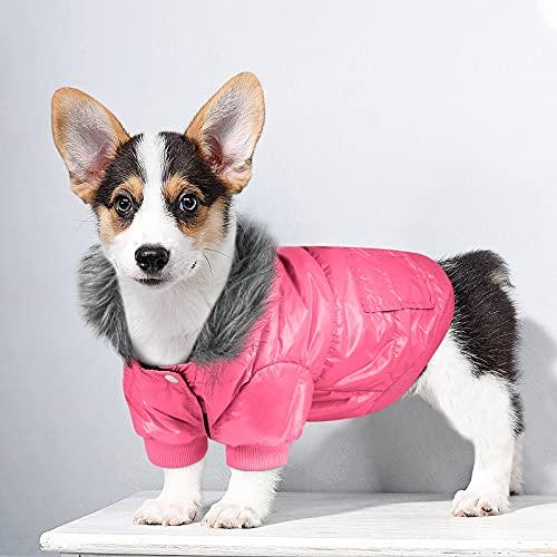 Namsan Cappotto Invernale per Cani Giacca per Cani Imbottita in Caldo Cotone Cappotto con Cappuccio per Cani di Taglia Piccola/Media-XXL