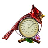 Evergreen Garden Beautiful Decorative Cardinal Bird Metal and Glass Wall Thermometer - 14 x 1 x 16 Inches Fade and Weather Resistant Indoor/Outdoor Decoration for Homes, Yards and Gardens