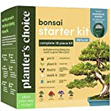 Bonsai Tree Growing Kit - Grow 4 Indoor Bonsai Trees - Plant a Garden from Seeds - Unique Gardening Gifts for...