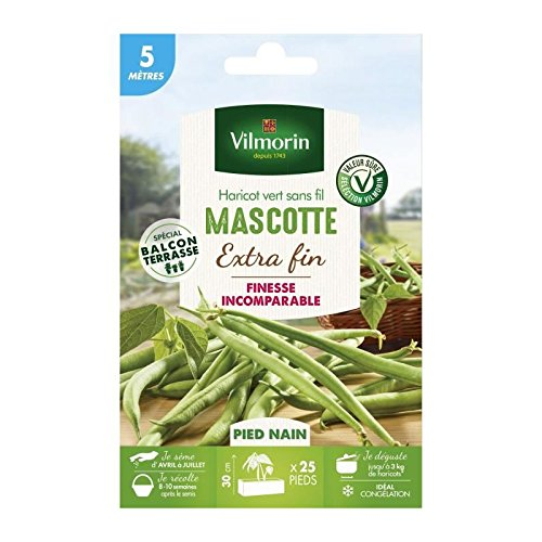 Vilmorin Graines de Haricot Mascotte - 5 m
