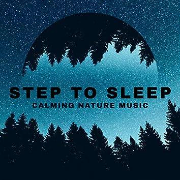 Step to Sleep - Calming Nature Music to Help You Get a Good Night's Sleep, Meditation (Feel More Self-control)