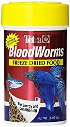 10 Best Betta Foods