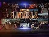 Flamenco para tus ojos