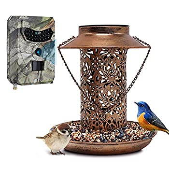 TBNOONE Solar Bird Feeder with Camera Attached,Hanging Bird Feeder with Lights and 12MP 1080P Wireless Motion Activated Hunting Camera Set 32GB TF Card Included