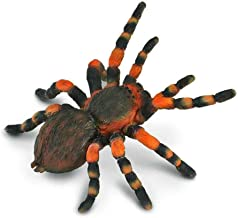 CollectA Insects Mexican Redknee Tarantula Toy Figure - Authentic Hand Painted Arachnid Model