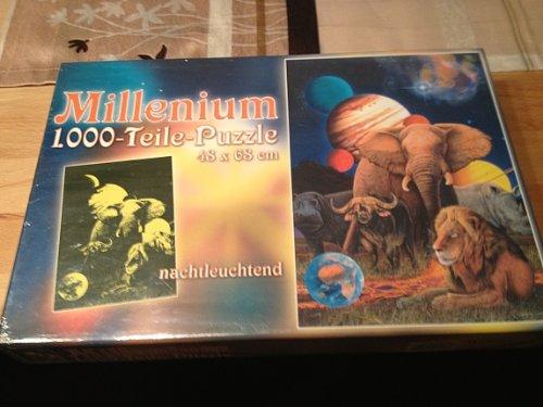 Millenium 1000 Teile Puzzle (nachtleuchtend)