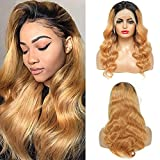 Omber Lace Front Wig Human Hair Wigs for Black Women 150% Density 1B/27 Body Wave Lace Frontal Human Hair Wigs Pre Plucked with Baby Hair Natural Hairline (1B/27 Body Wave Lace Front Wig, 18Inch)