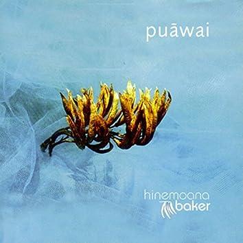 Puawai